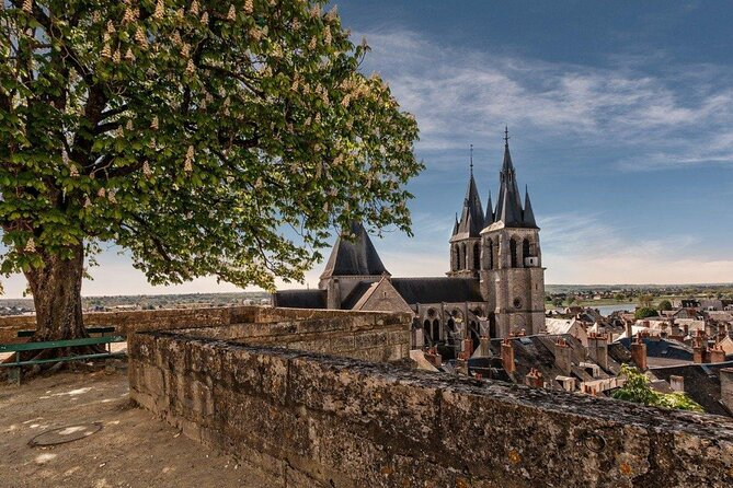 Fun stroll and discovery of Blois
