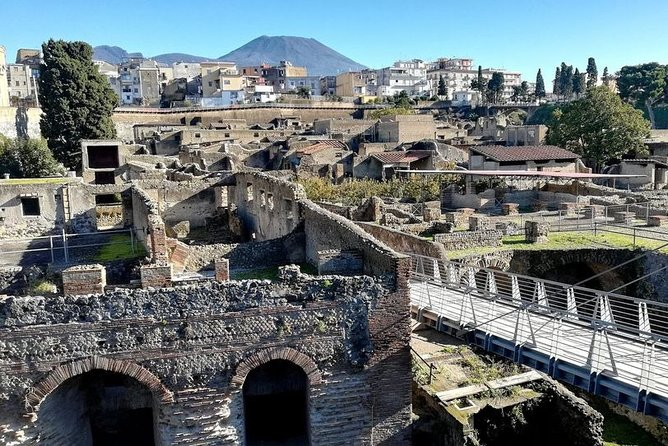 the splendour of Herculaneum ruins with guide