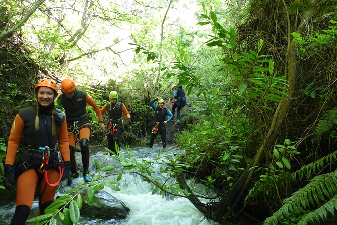 Half-Day Canyoning in Gibbston Valley from Queenstown