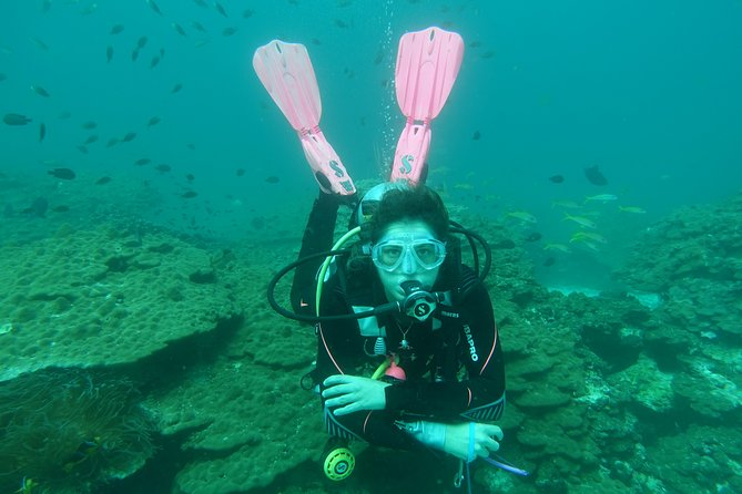 Two-Dives Scuba Diving Experience in Muscat