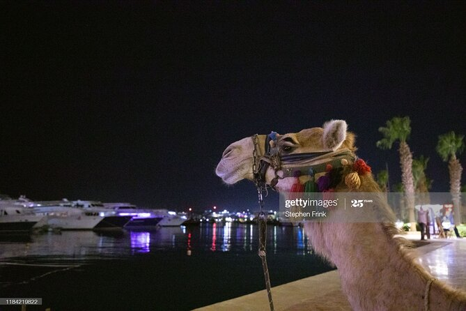 Amazing Hurghada City Tour with Hurghada Museum