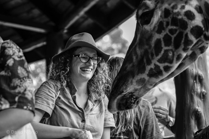 Day tour to Giraffe center elephant trust and Nairobi safari walk