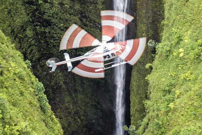 Private Moloka'i Sea Cliffs with Landing Helicopter Excursion from Kapolei