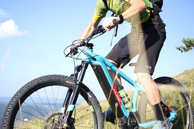 24-Hour E-Bike Rental in Dobravlje