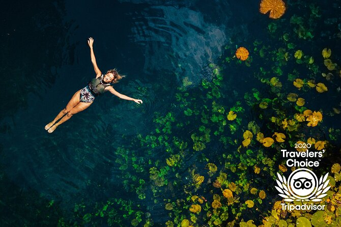 Priority Access: Tour Cenotes Oasis Maya from Cancún and Playa del Carmen