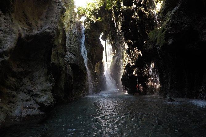 Private River Trekking Adventure at Kourtaliotis Gorge