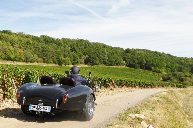 Private Trike Rides with Driver in Burgundy Country