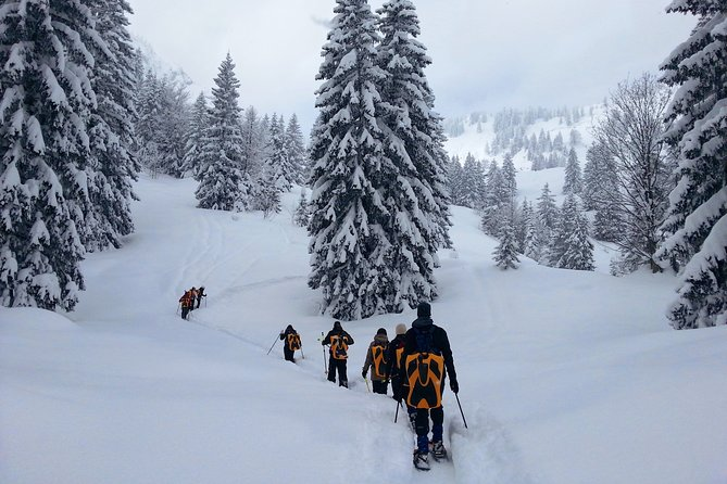 Snowshoe tour on Schliersee with zipflbob ride