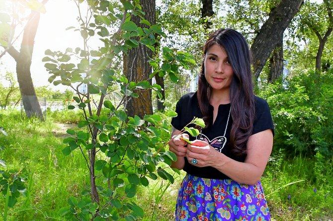 Mohkinstsis Walking Tour - Calgary's Indigenous History