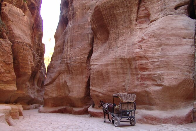 Private Petra Wadi Rum Day Tour from Aqaba Hotel