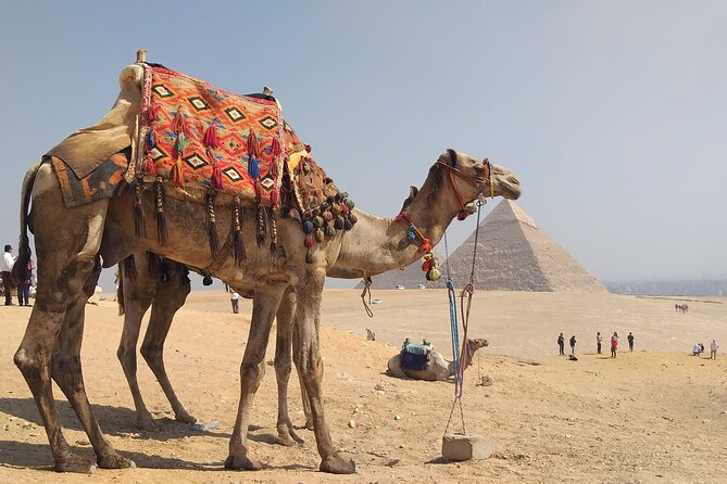 Pyramids of Giza and sphinx Tour- camel ride with trusted shopping places