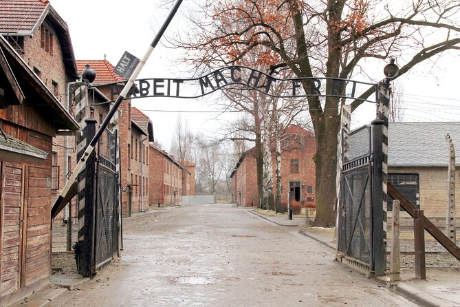 From Krakow: Auschwitz-Birkenau Memorial and Museum Guided Tour