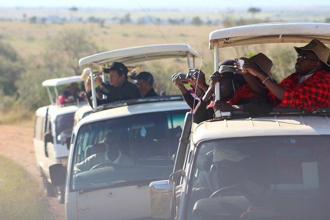 8-Day Best of Kenya and Tanzania Safari from Nairobi