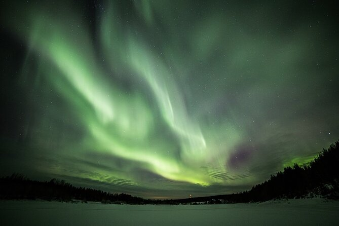 Chasing the Magic Northern Lights in Rovaniemi