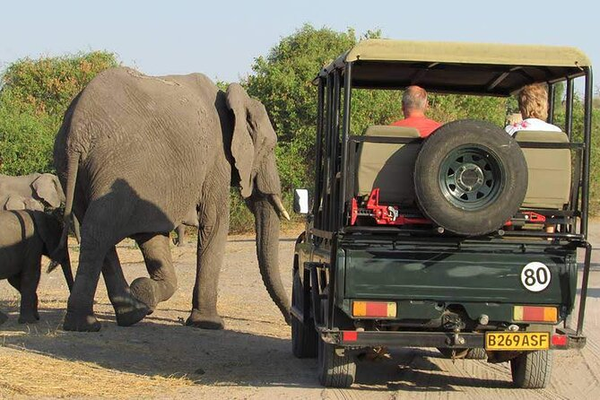 3-Day Guided Tour in Chobe Natural Park