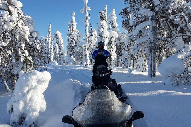 Husky Safari and Snowmobile Experience in Rovaniemi