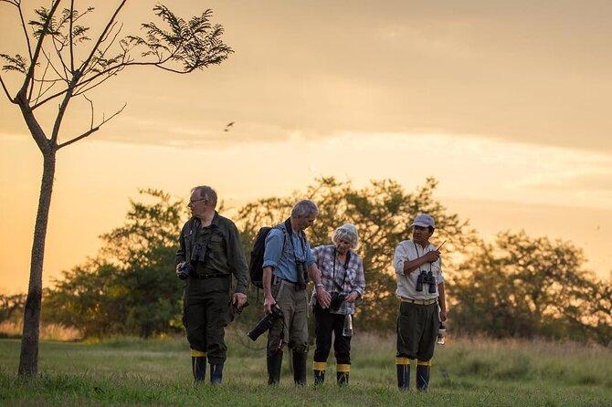 6-Day Iguazu Falls & Ibera Marshlands Luxury Tour