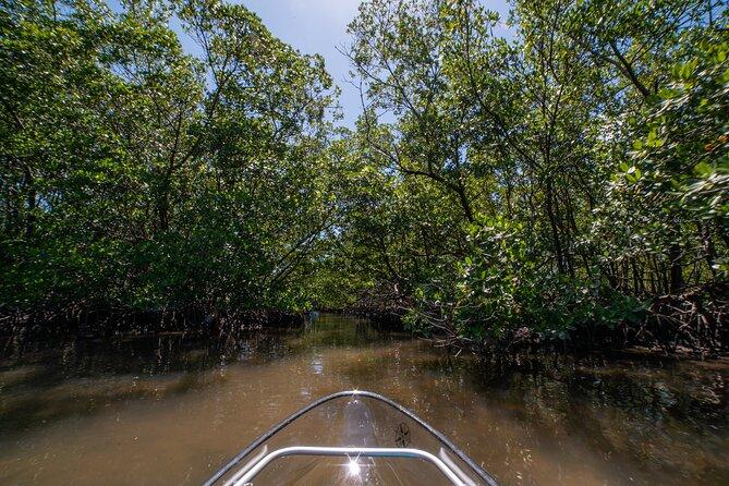 Clear Kayak Tours in Bonita Springs