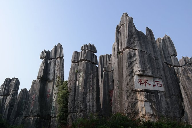 1 Day Stone Forest and Jiuxiang Cave with Roast Duck - Charge by Vehicle