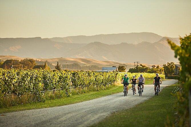 Private Biking Wine Tour (full day) in the Marlborough Region
