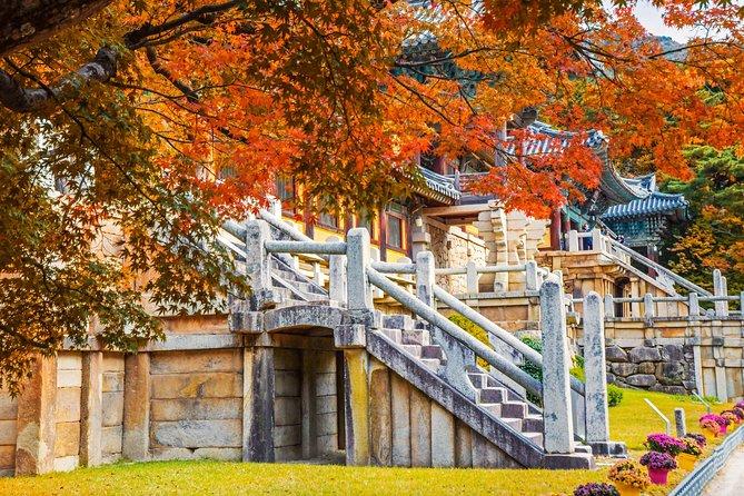 Korail Day Trip to Gyeongju's Unesco World Heritage Sites from Seoul