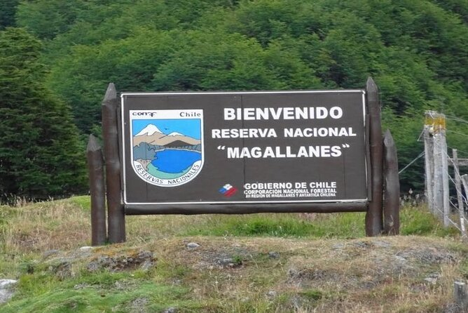 Magallanes National Reserve from Punta Arenas