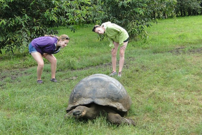 8-Day Galapagos Island Hopping Budget