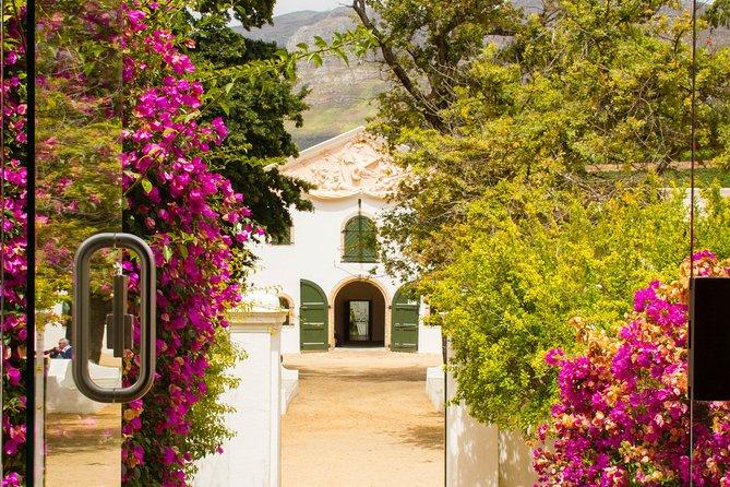 Full Day Private Constantia Wine Tour