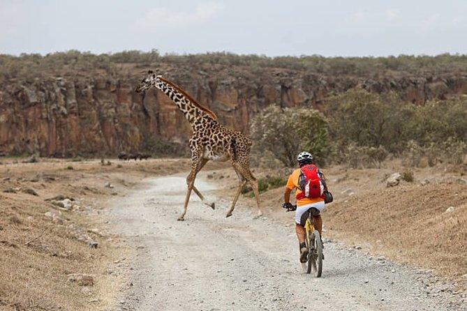 Visite privée en vélo au parc national Hell's Gate au départ de Nairobi