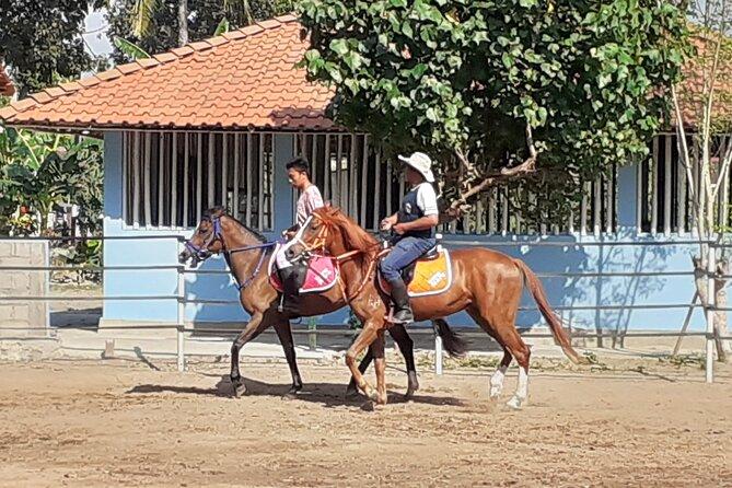 Horse Riding Class in Prambanan