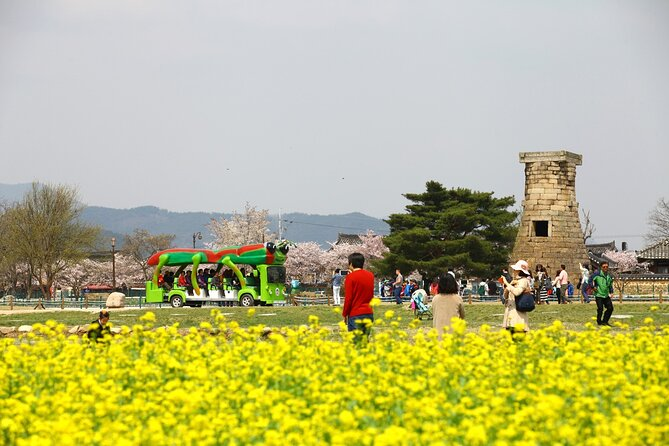 2-Day Rail Tour to Gyeongju and Busan from Seoul
