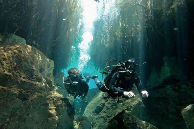 Dive 3 Cenotes