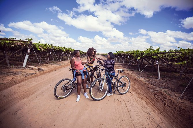 Winelands Adventure