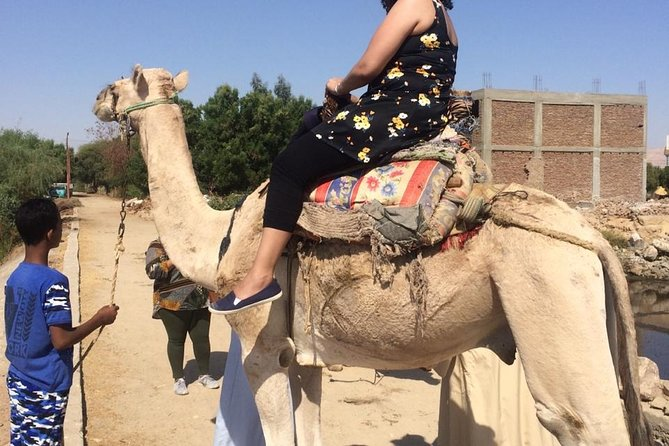 Best of Egypt: 7-Nights Cairo, Aswan, Luxor and Nile Cruise with Flights