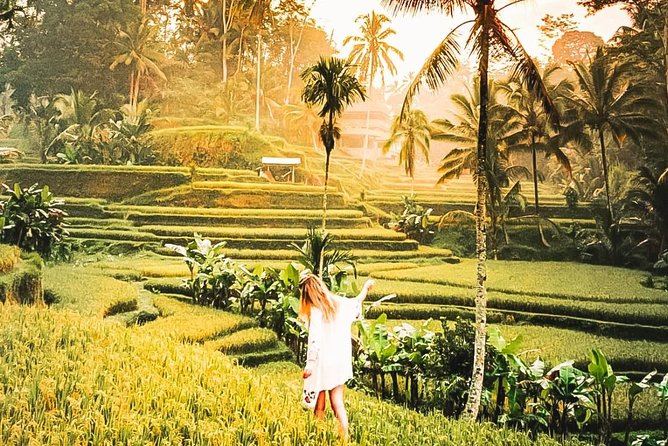 Tanah Lot and Ubud Bali Full Day Private Trip - Best Price Travelers' Choice