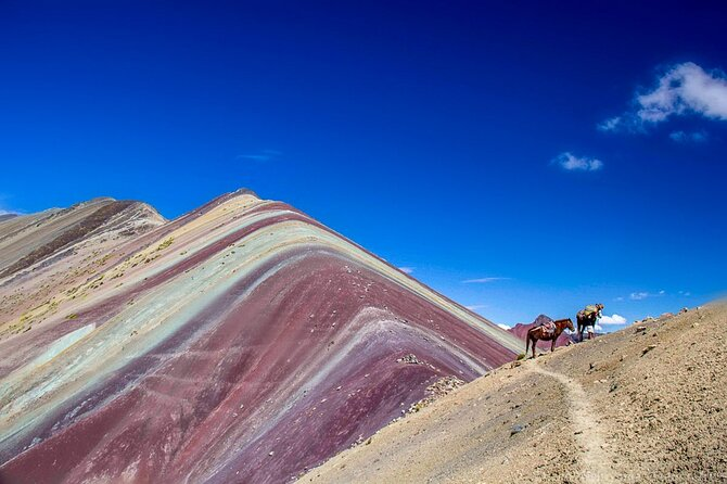 Cusco:Private Full Day Trekking the Rainbow Mountain & Red Valley with Box Lunch
