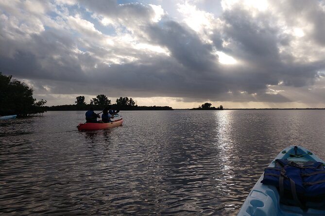 Guided Kayak Tour tour with Dolphin Sightseeing