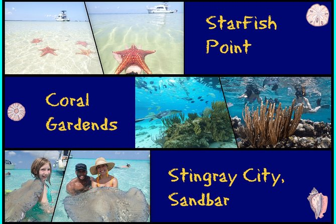 Starfish, Stingray and Coral Garden (3-Stop Adventure)