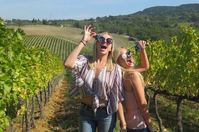 Tuscan Wine & Olive Oil Tour in Lucca
