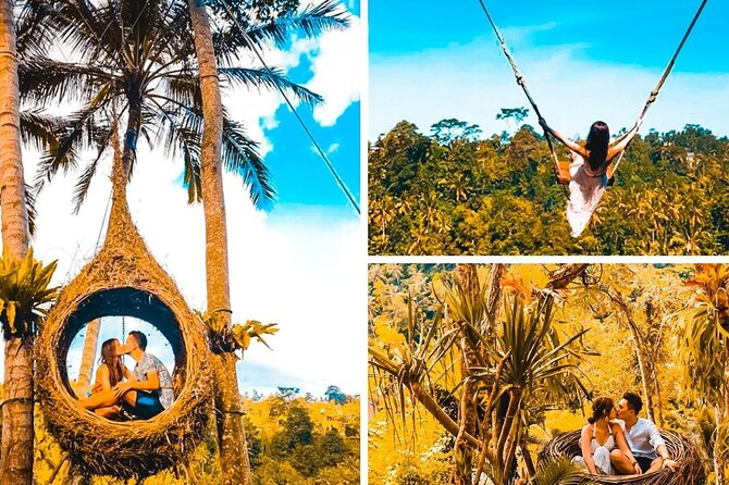 Bali Most Instagramable Waterfall & Jungle Swing Private Day Trip