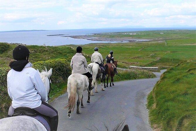 Horse riding - Dirt Trek Trail. Lisdoonvarna, Clare. Guided. 1 hour.
