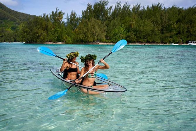 Eco guided excursion to the lagoon of Moorea in transparent kayak