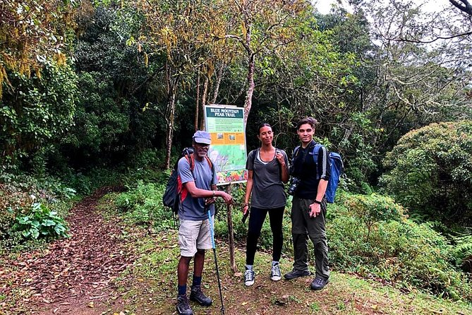 Private Guided Hiking Tour to the Blue Mountains