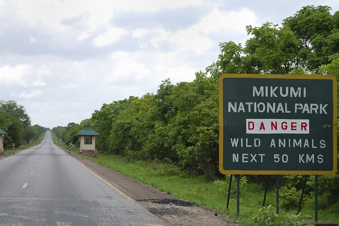 Adventure in Mikumi National Park - 2 Days/ 1 Night