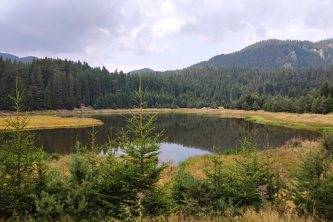 Superb Jeep Safari in the Rhodope Mountains