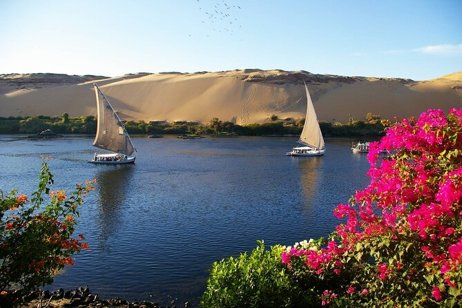 Aswan: Private Nile Boat Cruise and Botanical Garden Visit