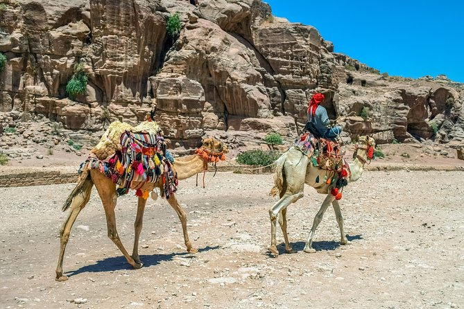 5-Day Private Jordan Tour: Petra, Wadi Rum and the Dead Sea from Amman