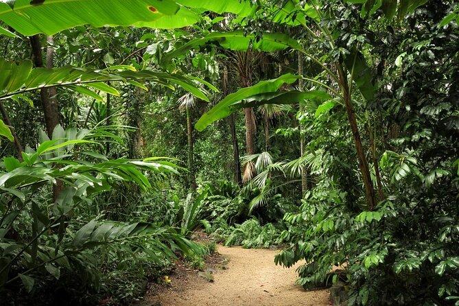 Giardini botanici di Cairns