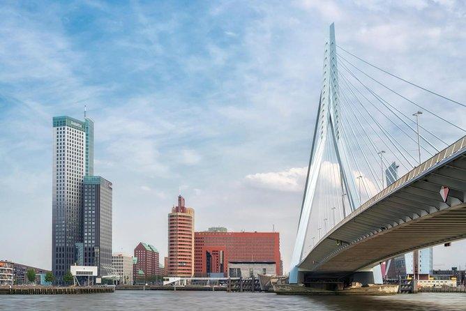 Erasmusbrug (Erasmus Bridge)