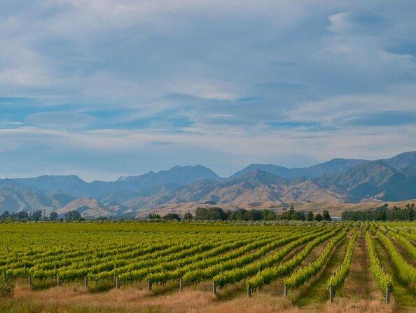 Región vinícola de Kumeu